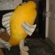 Mascot Costume Flounder