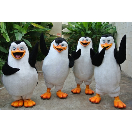Mascot Costume Penguins (each one)