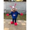 Mascotte costume personalizzata Coccinella