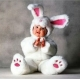 Mascot Costume Rabbit
