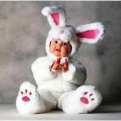 Mascot Costume Rabbit