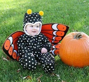 sc 1 st  MASCOTTEMANIA & Mascot Costume Butterfly