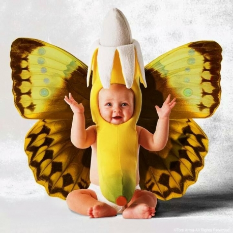 Mascot Costume Butterfly Yellow