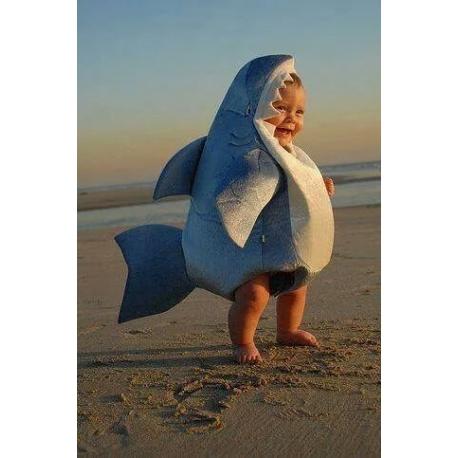 Mascot Costume Shark
